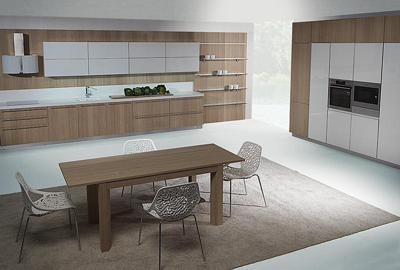 Sala Cucine: Cucine su misura - Cesano Maderno